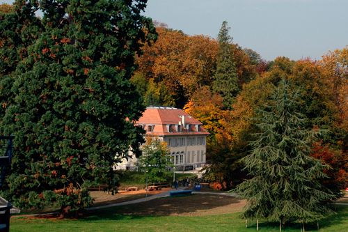 The Dorigny castle in the trees